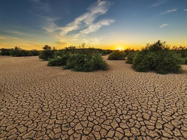 Mơ thấy hạn hán điềm hung hay cát? Hạn hán là số mấy?